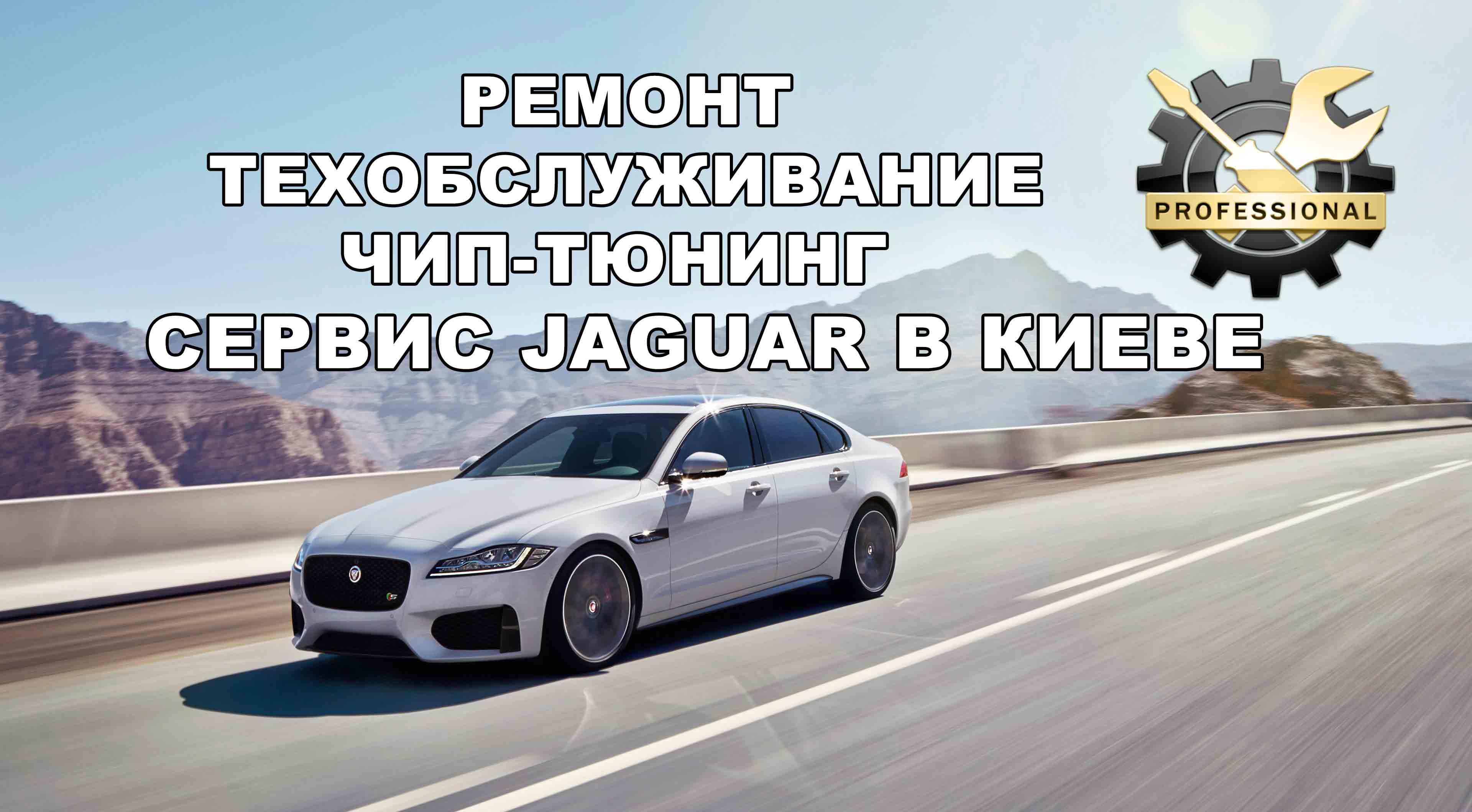 Jaguar-XF3WEB